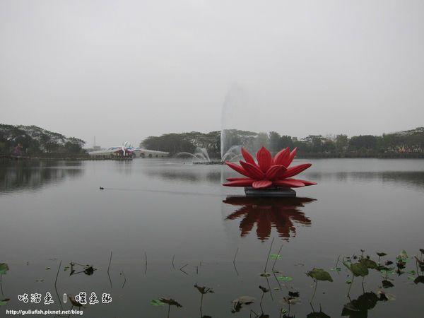 26-天鵝湖公園